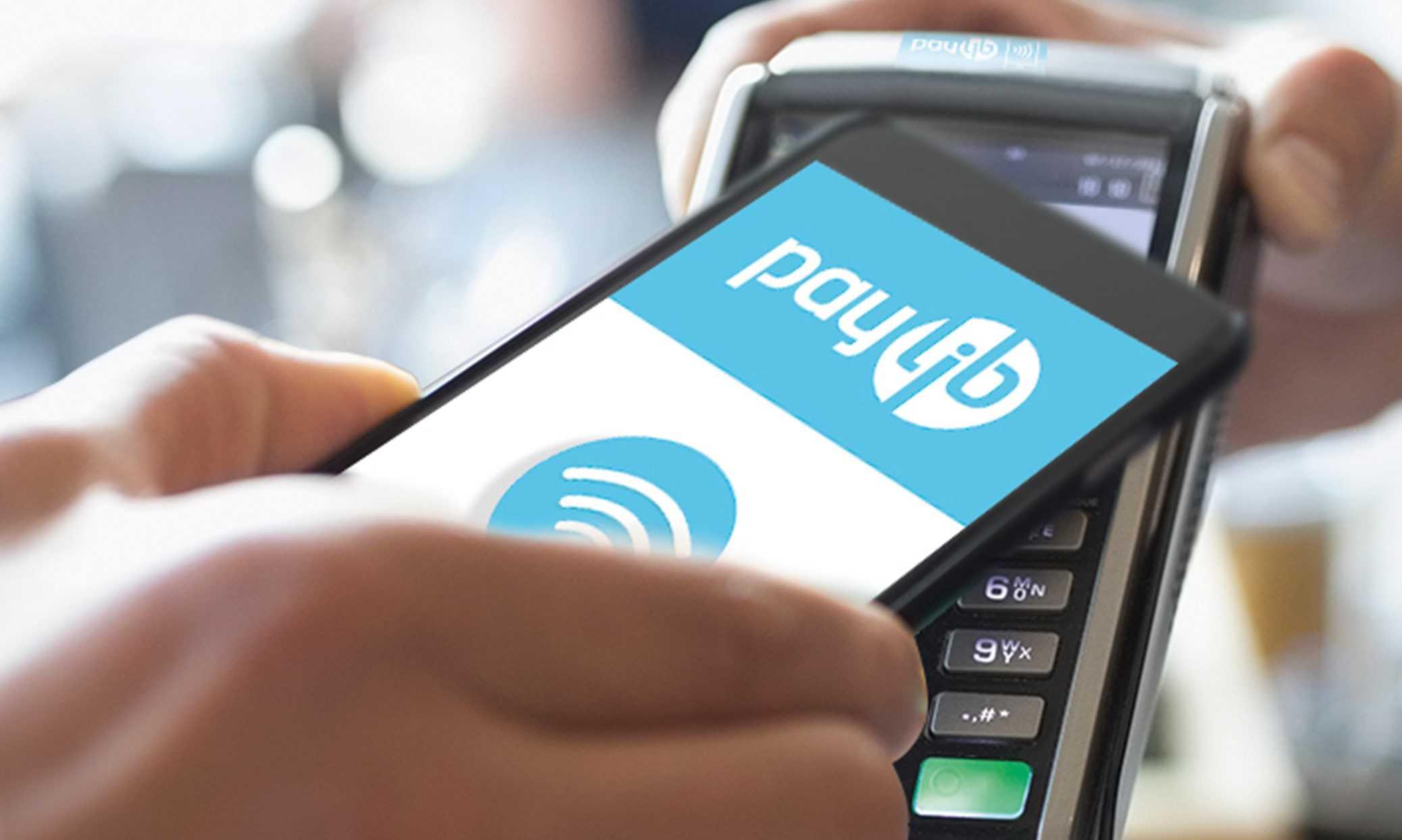 paylib logo info
